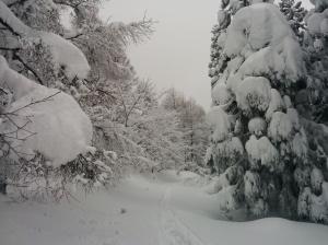 4 metrii lunta tullu tähän mennessä kaudella.